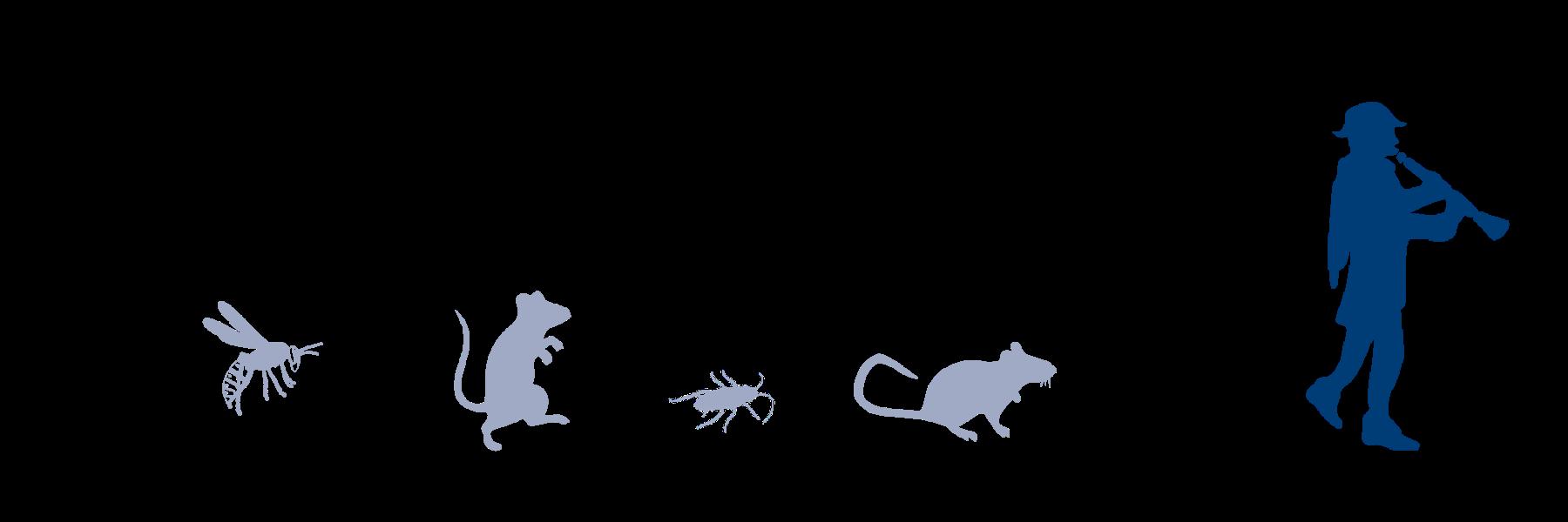 Schädlinge (2)